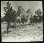 005-04: Rock Formations and Trees by George Fryer Sternberg 1883-1969