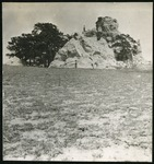 005-05: Rock Formation and Trees by George Fryer Sternberg 1883-1969
