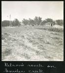 006-06: Nelson's Ranch on Snider Creek by George Fryer Sternberg 1883-1969