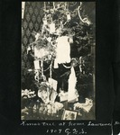 008-05: Christmas Tree in the Sternberg Home by George Fryer Sternberg 1883-1969