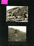 011-00: George Sternberg Photo Album Number 2 by George Fryer Sternberg 1883-1969