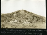 014-01: Pliocene Exposure Above the Belly River Formation by George Fryer Sternberg 1883-1969