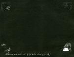017-01: Blank Space in George Sternberg's Photo Album by George Fryer Sternberg 1883-1969