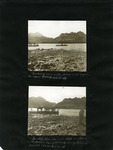 019-00: George Sternberg Photo Album Number 2 by George Fryer Sternberg 1883-1969