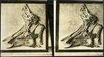 023-01: Skull Fossil by George Fryer Sternberg 1883-1969