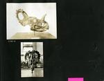 025-00: George Sternberg Photo Album Number 2 by George Fryer Sternberg 1883-1969