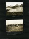 030-00: George Sternberg Photo Album Number 2 by George Fryer Sternberg 1883-1969