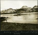 030-01: Cattle on Ferry by George Fryer Sternberg 1883-1969