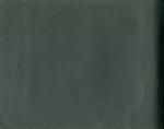 004-00: Blank Page by George Fryer Sternberg 1883-1969