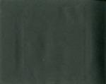 013-00: Blank Page by George Fryer Sternberg 1883-1969