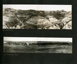 029-00: by George Fryer Sternberg 1883-1969