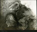 030-02: by George Fryer Sternberg 1883-1969