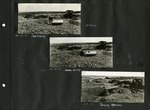 007_00: Excavation of Specimen by George Fryer Sternberg 1883-1969