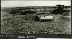 007_02: Excavation of Specimen by George Fryer Sternberg 1883-1969