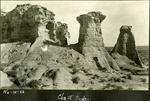 019_03: Chalks Beds Rock Formations by George Fryer Sternberg 1883-1969