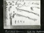 020_01: Different Fossil Specimens by George Fryer Sternberg 1883-1969