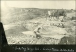 023_03: Collecting Large Fossil fish and Chalk Beds by George Fryer Sternberg 1883-1969