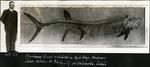 024_01: Large Fossil Fish Specimen by George Fryer Sternberg 1883-1969