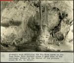 005_01: Cave Room by George Fryer Sternberg 1883-1969
