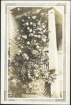 007_03: A Flowering Vine on a Porch by George Fryer Sternberg 1883-1969