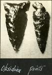 011_05: Obsidian Points by George Fryer Sternberg 1883-1969
