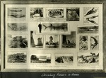 015_01: A Frame Featuring Kansas Excavations and Fossils by George Fryer Sternberg 1883-1969