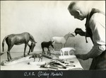 019_01: George Sternberg and Models of Horses by George Fryer Sternberg 1883-1969