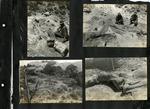 011_00: George Sternberg Photo Album Number 8 by George Fryer Sternberg 1883-1969