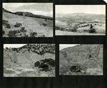 018_00: George Sternberg Photo Album Number 8 by George Fryer Sternberg 1883-1969
