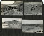 019_00: George Sternberg Photo Album Number 8 by George Fryer Sternberg 1883-1969