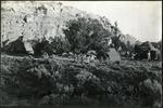 023_01: Camping Near Regina, New Mexico by George Fryer Sternberg 1883-1969