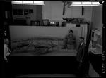 Plesiosaur - complete specimen, side view - with G. F. Sternberg, Leaford Windle and M. V. Walker by George Fryer Sternberg 1883-1969