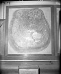 Inoceramus clam by George Fryer Sternberg 1883-1969