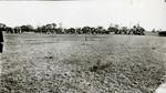 1910's Baseball Game