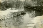 Snow on the banks of Big Creek
