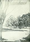 Winter scene in the quad near Picken Hall