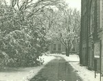 Sidewalk from Picken Hall to Sheridan Coliseum