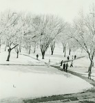 Students on the Quad in the Snow
