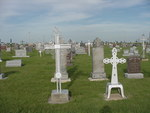 Iron crosses in the St. Fidelis Cemetery by Patty Nicholas