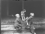 Babies on Porch by Lyman Dwight Wooster