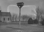 Bird House by Lyman Dwight Wooster